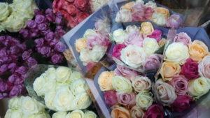 ruže krupno
