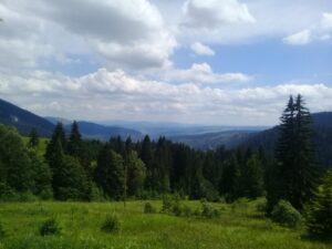 Nestvarni i u pjesmama opjevani valoviti pogled, sve do Moračkih planina